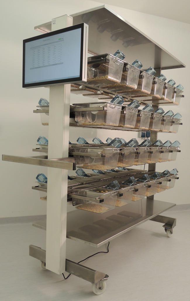 Revolyzer Cage Setup